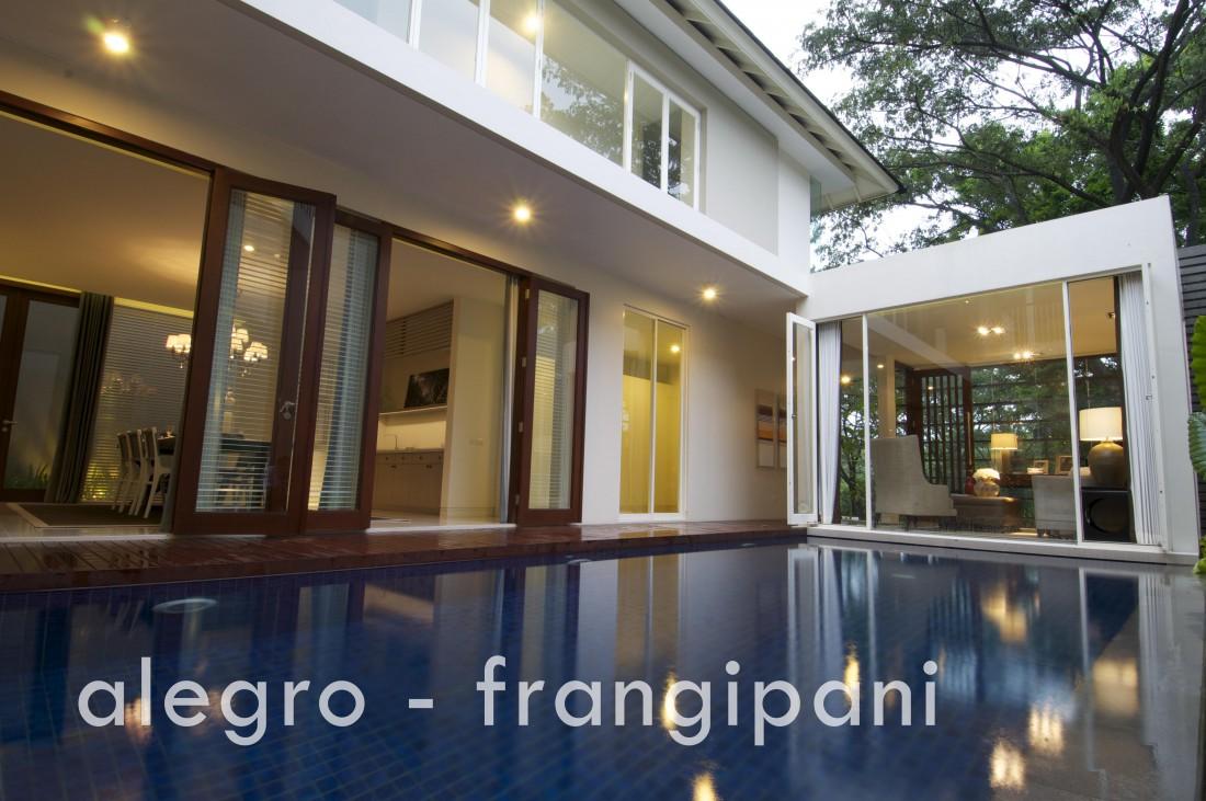 alegro-frangipani-001